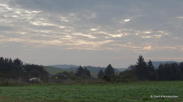 am Morgen hinter Jahnsdorf