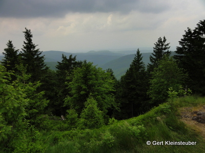 Blick vom oberen Beerberg