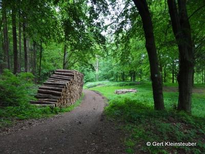Abstieg nach Friedrichroda