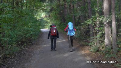 im Wald vor Schwosdorf