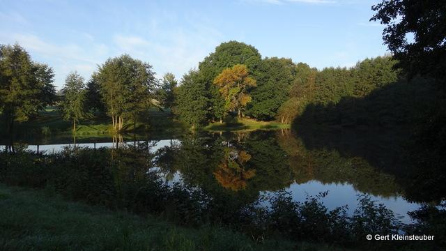 kleiner See zwischen Irfersgrün und Waldkirchen