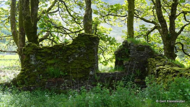 Ruine der Kapelle des Hl. Fillan