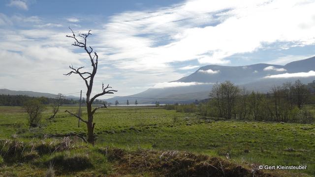 Morgen am Loch Tulla