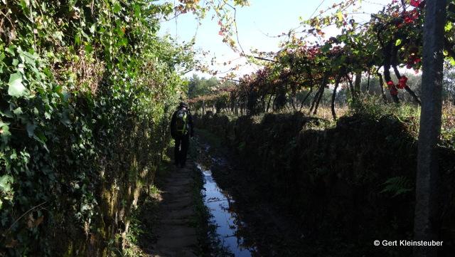 Weg am Wassergraben